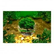 Περιβαλλοντική προστασία