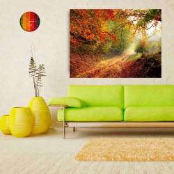 Φθινόπωρο στο δάσος.
