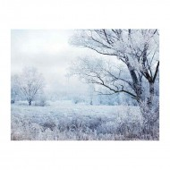 Χειμερινό τοπίο με χιονόπτωση