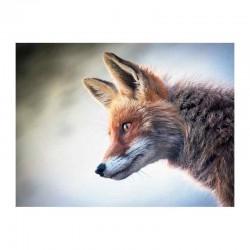 Χαριτωμένη αλεπού κοιτάζει επίμονα στο θήραμα