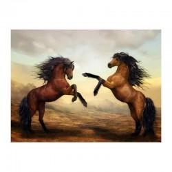 Άγρια άλογα έτοιμα για μάχη