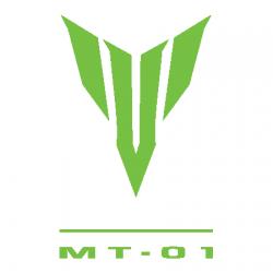 MT 01